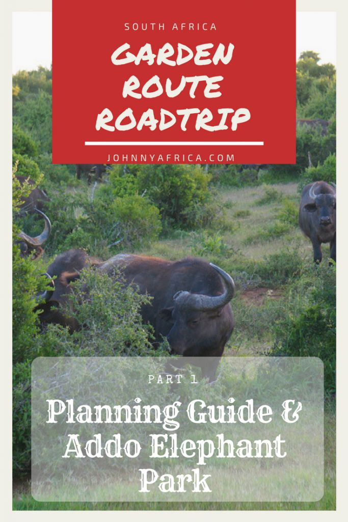 Garden Route Road Trip Itinerary Part 1: Intro and Addo Elephant Park