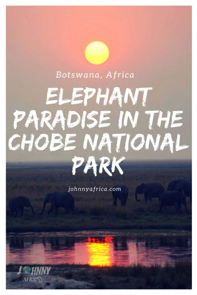 Chobe National Park: Elephant Paradise