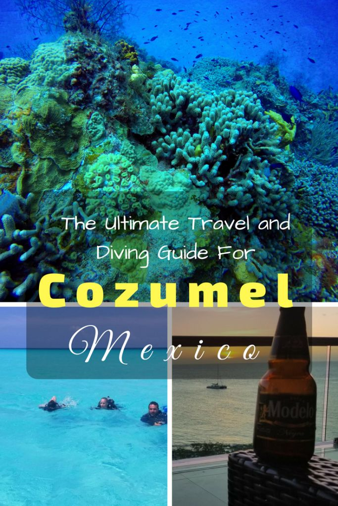 Cozumel is a beautiful island on Mexico's Caribbean coast. It boasts world class diving with mouthwatering Mexican food. #yucatan #scubadiving #caribbean #cozumel #mexico #barrierreef #cancun #tulum