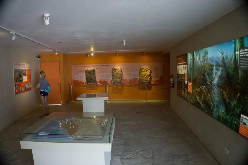 Paracas Museum
