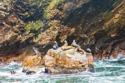 Isla Ballestas