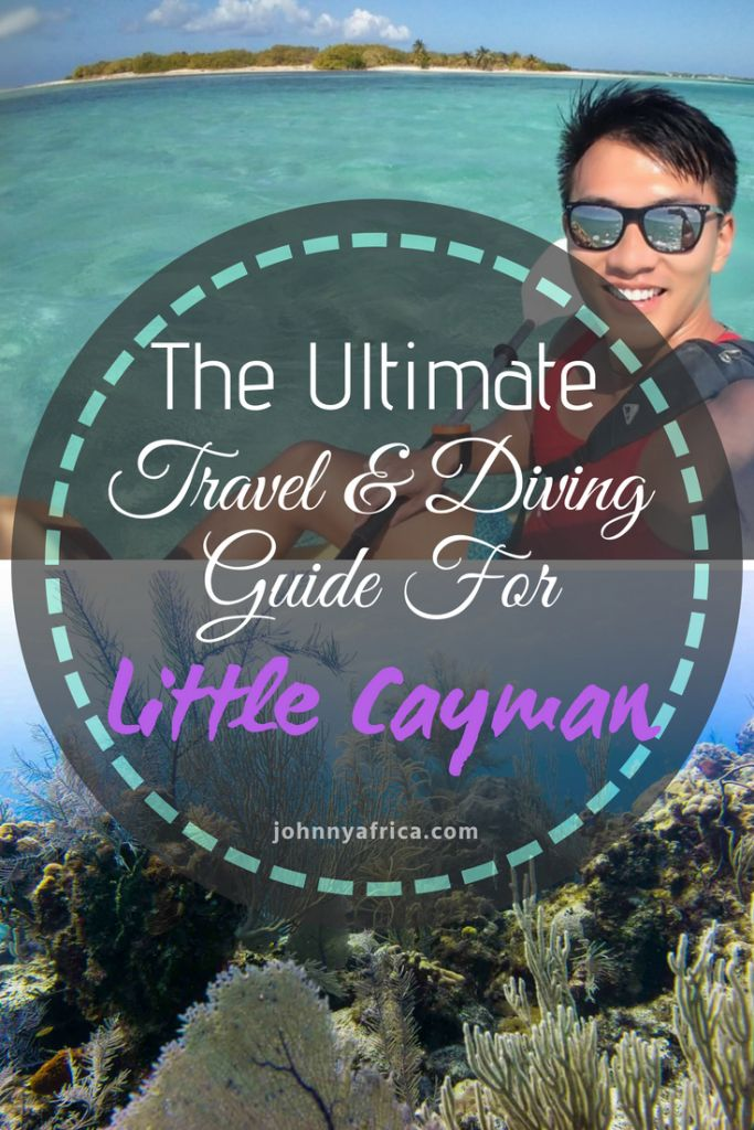 Little Cayman is island paradise perfected. Sandy white beaches, crystal blue water, and world class diving make this place the ultimate Caribbean getaway! #cayman #littlecayman #diving #scubadiving