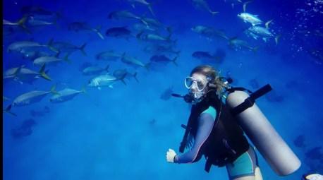 jackfish scuba diving turks and caicos