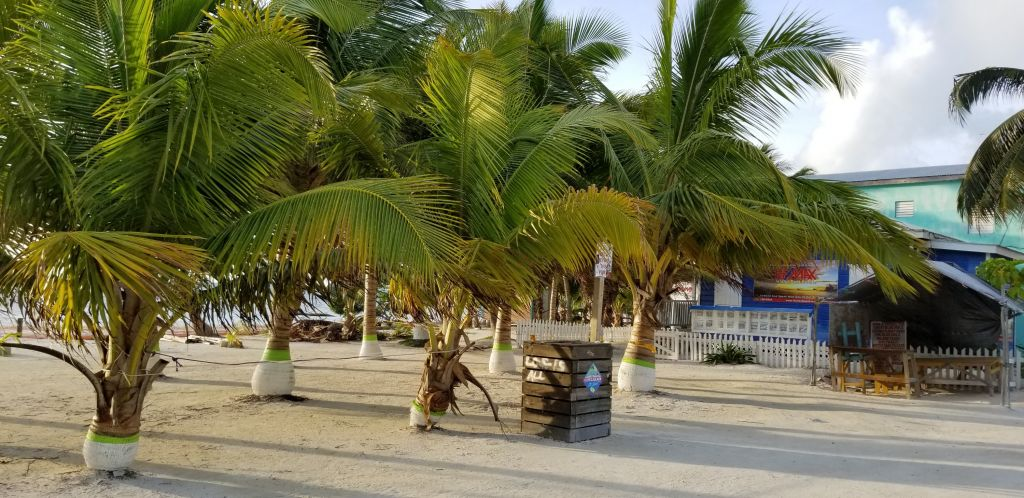 Caye caulker island belize