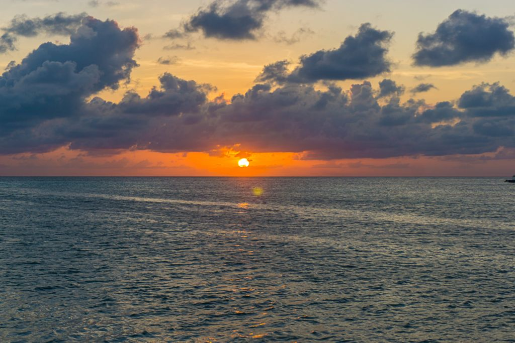 Lazy lizard sunset caye caulker
