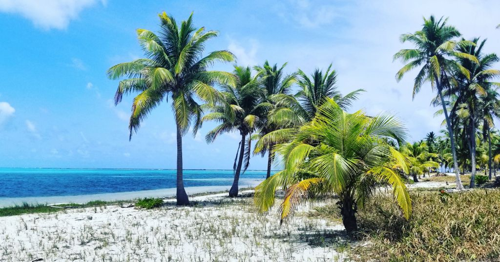 Hanging out on Half Moon Caye