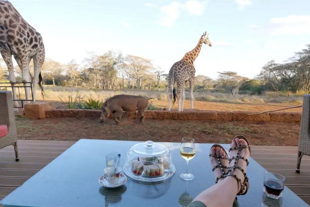 giraffe manor nairobi views