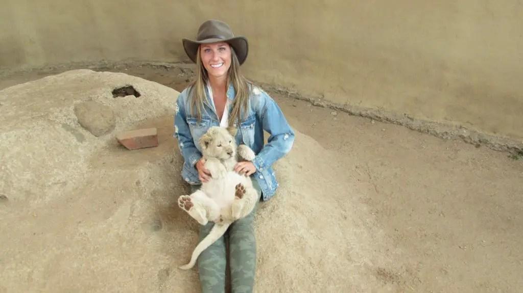 lion cub lion park south africa