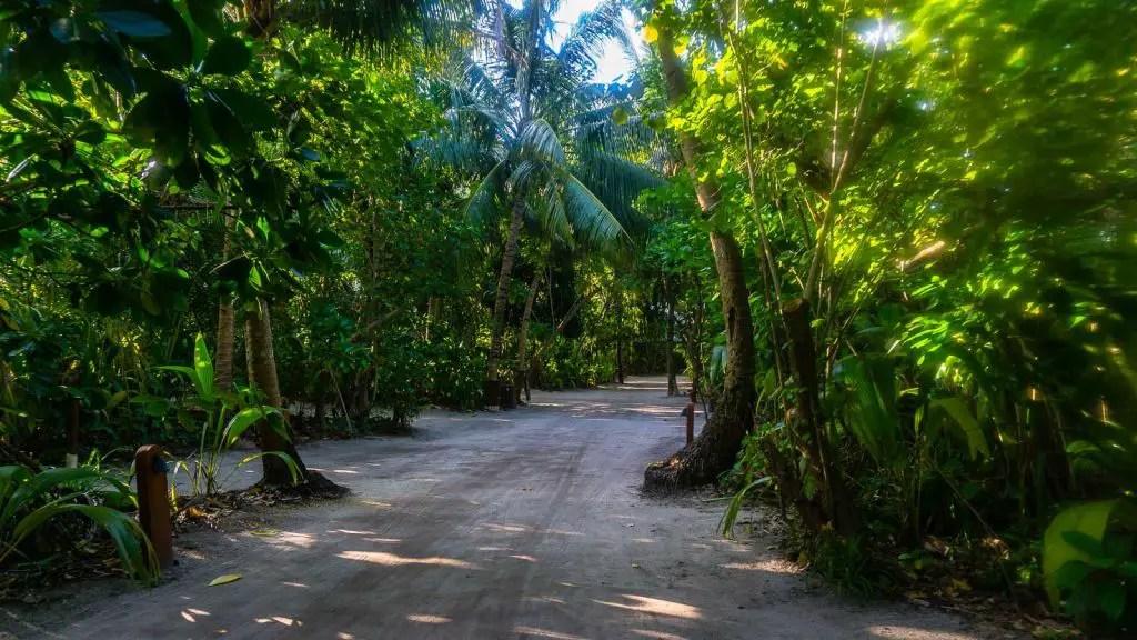 park hyatt hadahaa maldives
