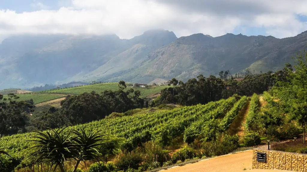 De Zeven wine farm