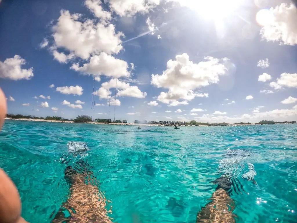 Bonaier shore diving