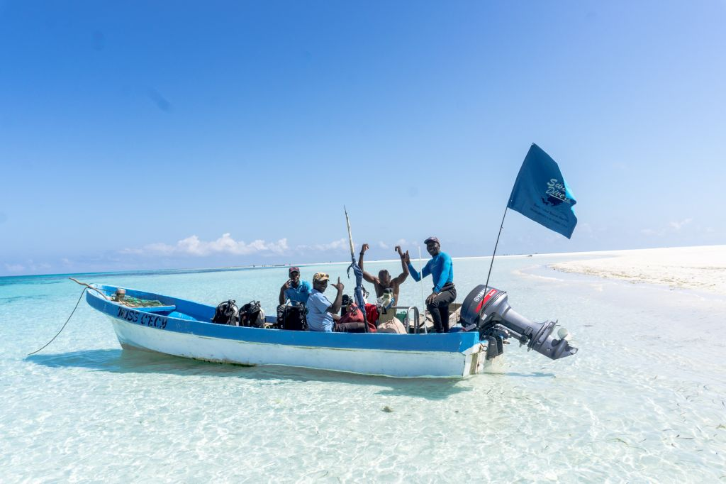 swahili divers pemba