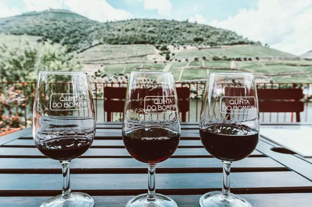 Douro Valley Vineyards wine tasting