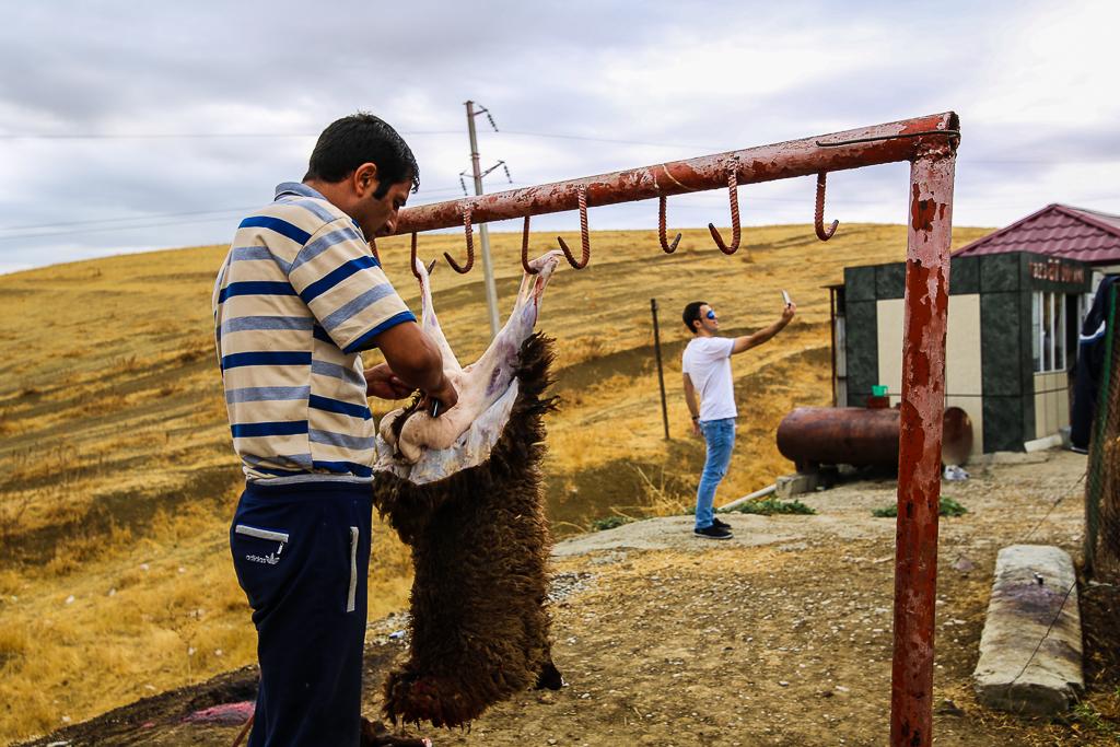 Azerbaijan lamb slaughter selfie 2015-1