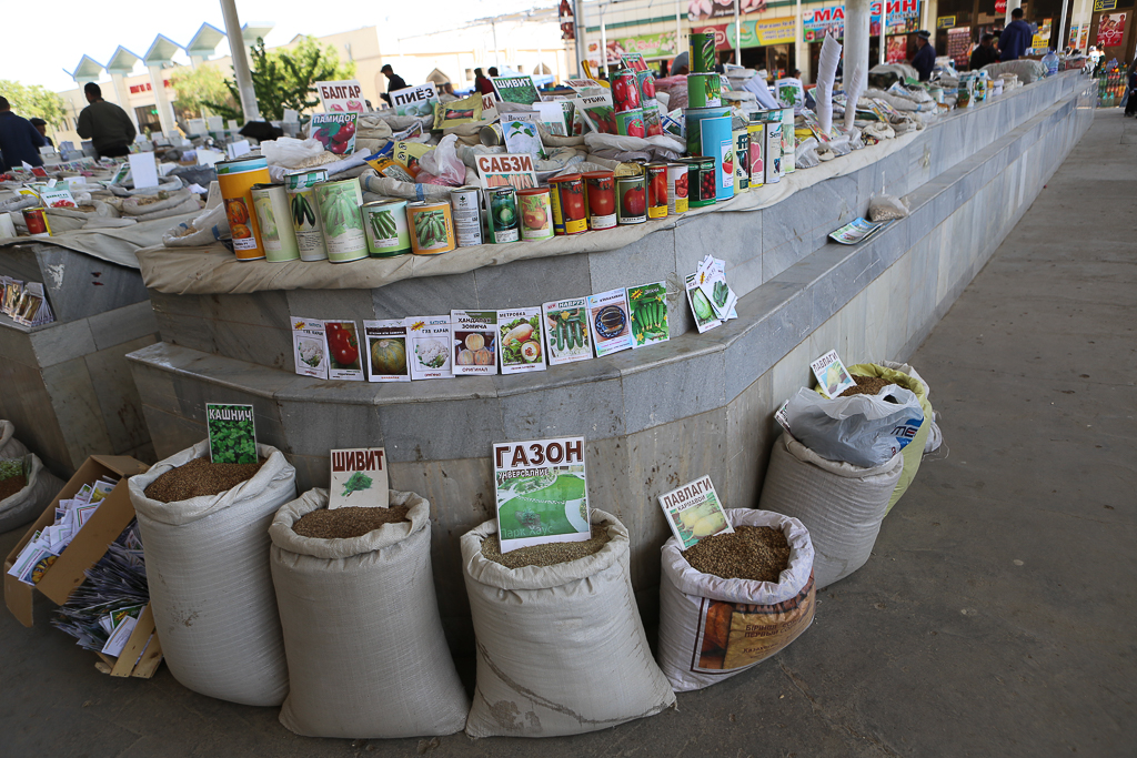 Bukhara Market-5256