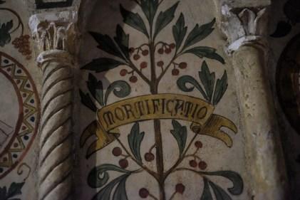 San Teodoro Pavia-9116