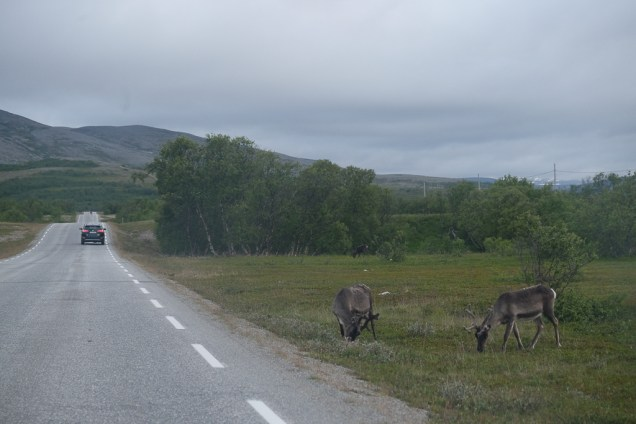 Lakselv_Roadtrip-3364