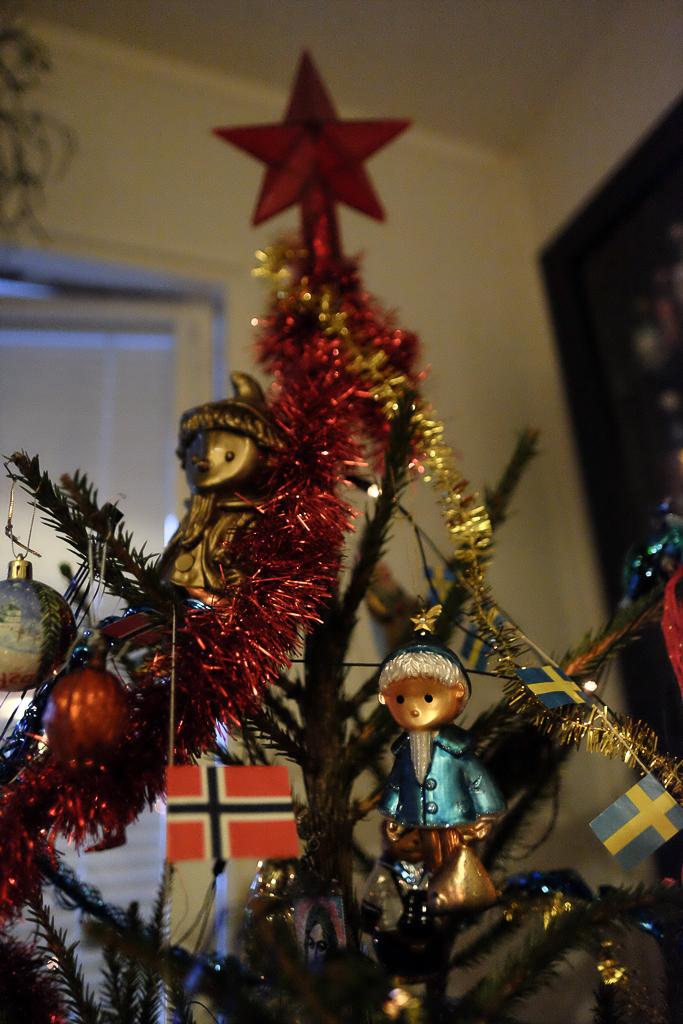 Most_beautiful_Christmas_tree-8430