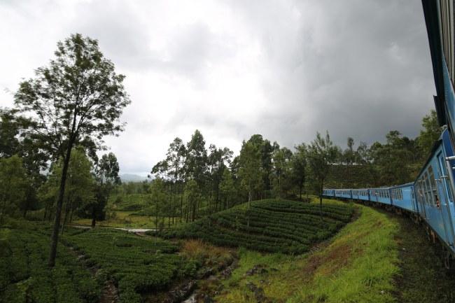 train-kandy-nuwara-eliya