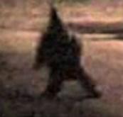 Detroit-Gnome