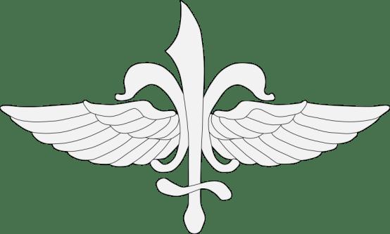 Sayeret_Matkal_insignia