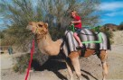 Free riding Tonto