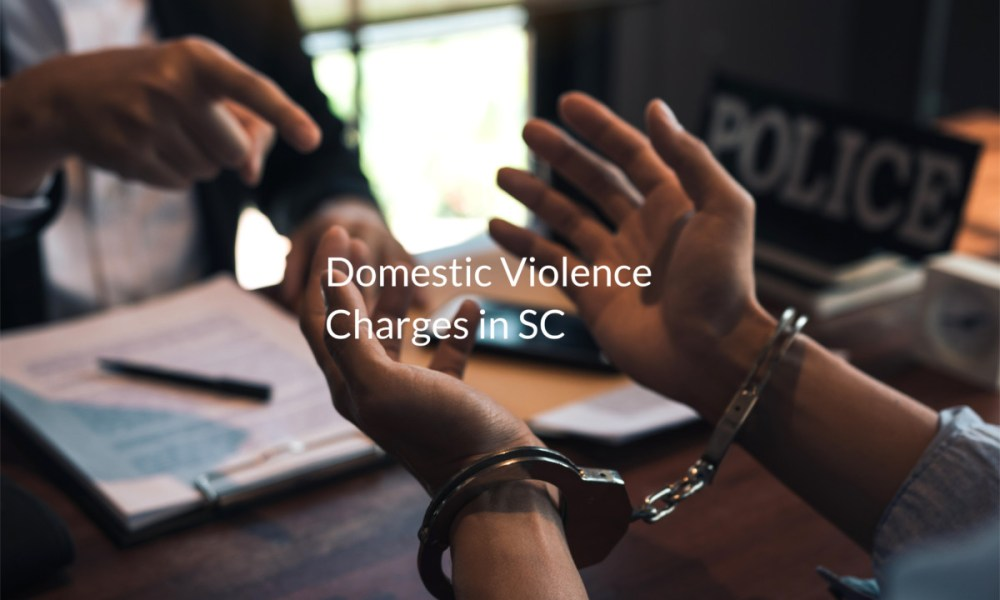 domestic violence charges in sc criminal defense lawyers in charleston sc