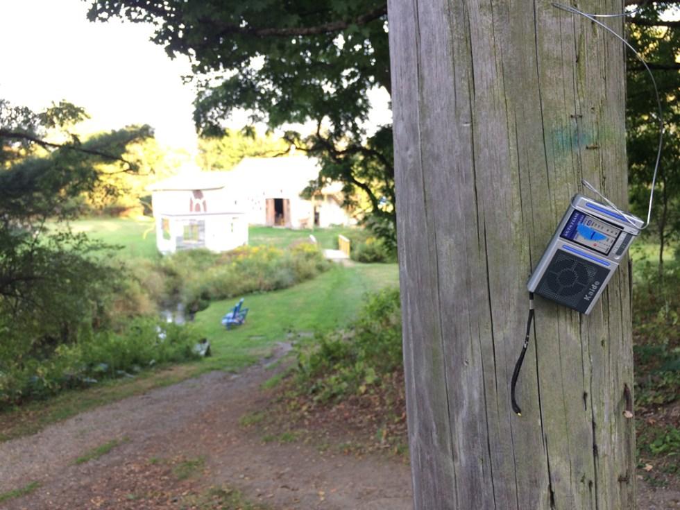 Radios IMG_6803