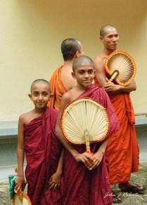 Lineage - Sri Lanka