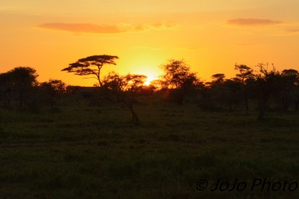 Chaka Camp Sunrise in Serengeti National Park