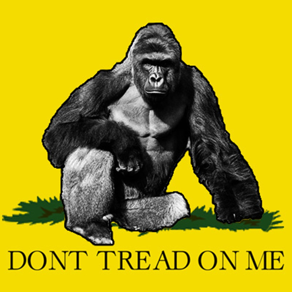 Contest: Win 3′ x 5′ John Ward Harambe Flag
