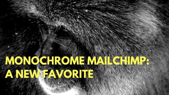 Monochrome MailChimp