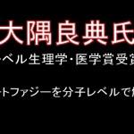 3年連続 日本人ノーベル賞受賞! #人気アイテム #トレンドアイテム #followme