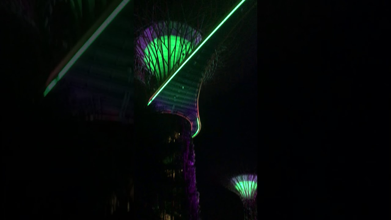 シンガポール 植物園の光のショー #トラベル #旅行 #followme