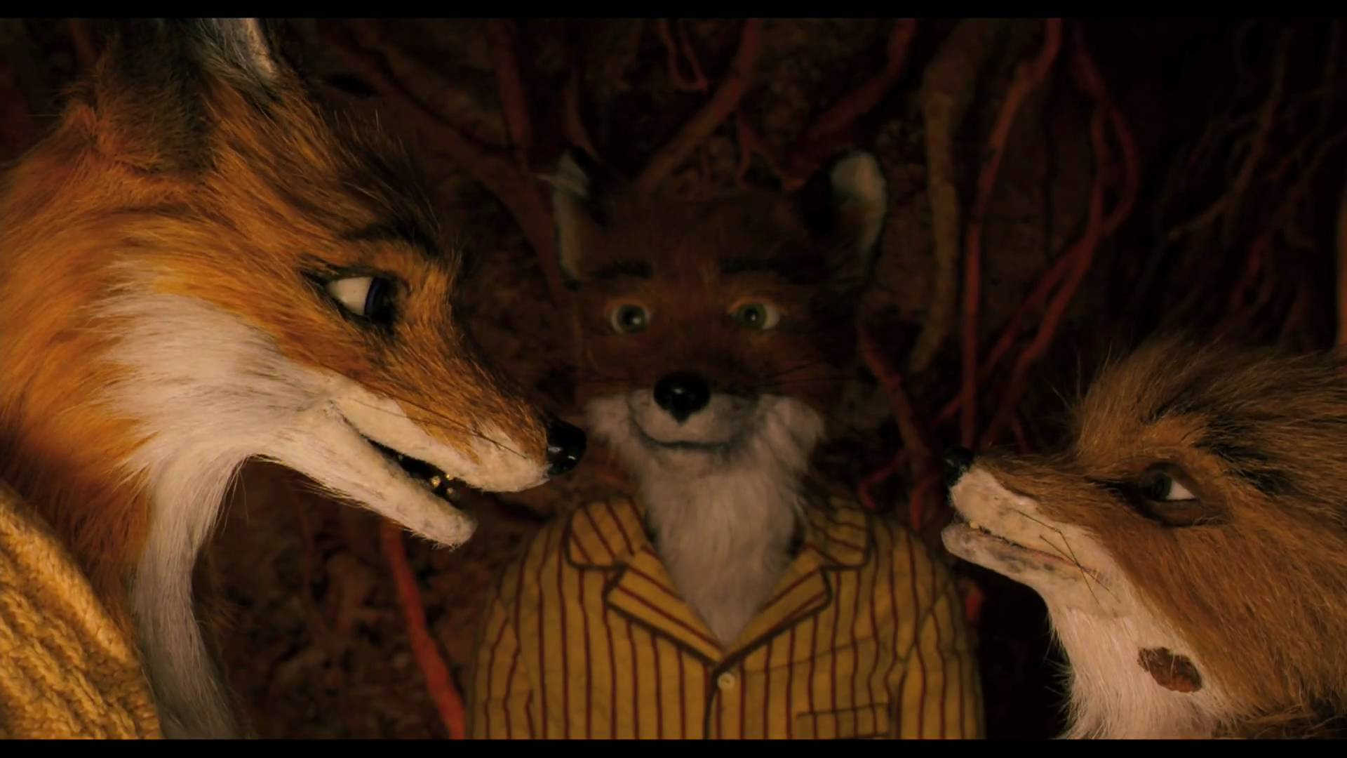 FANTASTIC MR. FOX – Official Theatrical Trailer #ディズニー #Disney #followme
