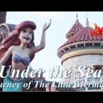 ºoºアリエルのアトラクション アンダーザシージャーニーオブリトルマーメイド WDW ニューファンタジーランド Under the Sea Journey of The Little Mermaid #ディズニー #Disney #followme