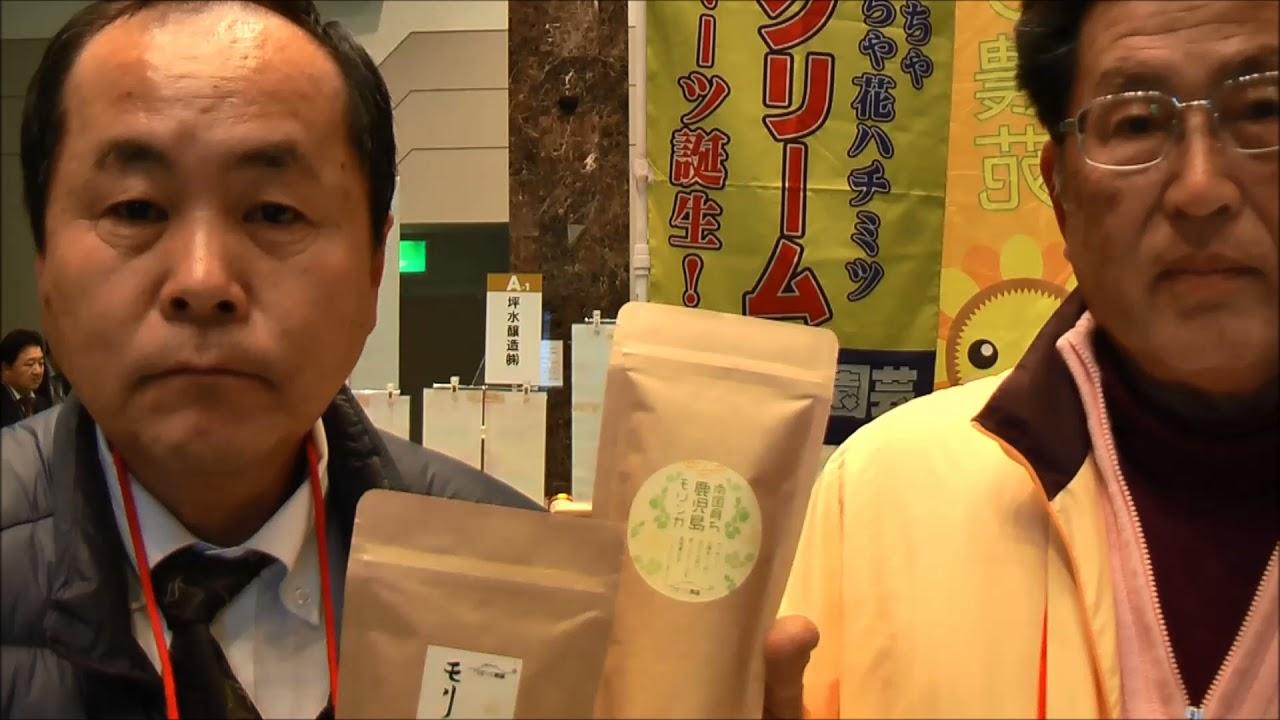 ワダツミ農園株式会社 鹿児島モリンガ茶 #トレンド #Trend #followme