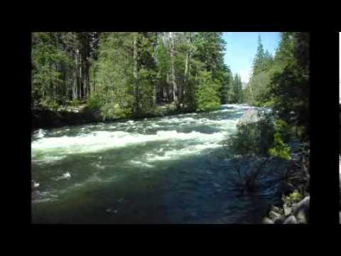 ヨセミテ国立公園散策 #ヨセミテ国立公園 観光 #Yosemite #followme