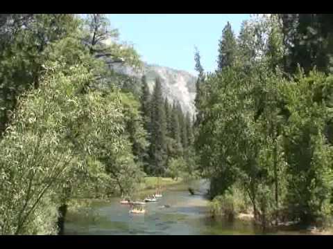 アメリカ西海岸の旅 5 「ヨセミテ国立公園」 #ヨセミテ国立公園 観光 #Yosemite #followme