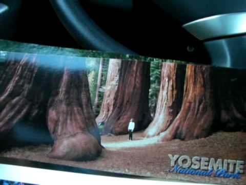 ヨセミテ ぶらり一人旅 その2 #ヨセミテ国立公園 観光 #Yosemite #followme