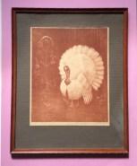 Red Turkey, Henri Verstijnen