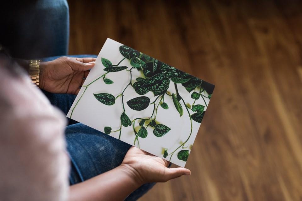 Joi Knows How Botanical Prints via Etsy