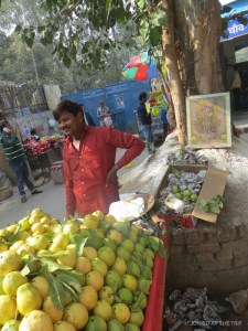 Fruit seller