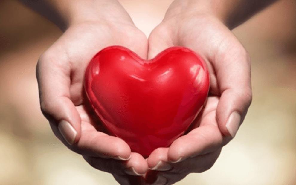 26 фактов о наших сердцах