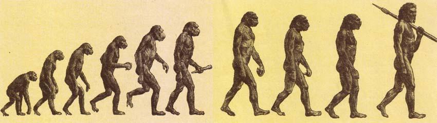 Эволюционирует ли человек сегодня?