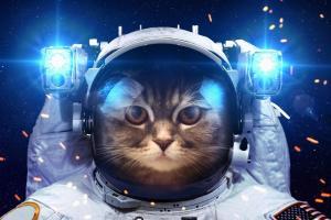 Тест по астрономии. Планеты и судьбы