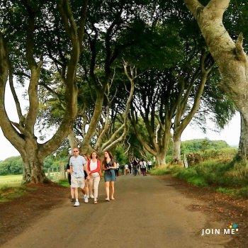 行程:愛爾蘭冰與火之歌「權力的遊戲」拍攝場景(Game of Thrones filming locations)黑暗樹籬 Dark Hedges