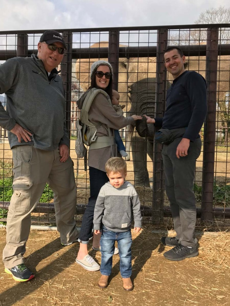 Safari Land Elephant with family