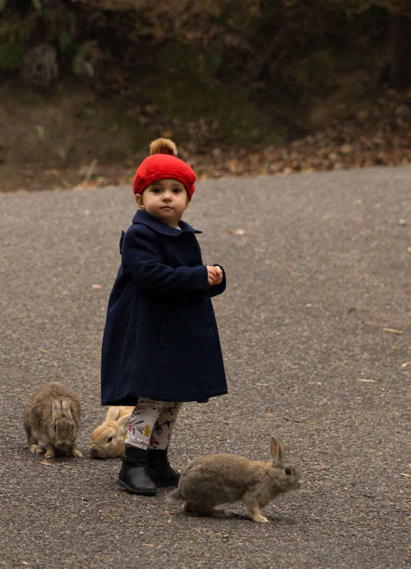 Okunoshima girl with rabbits
