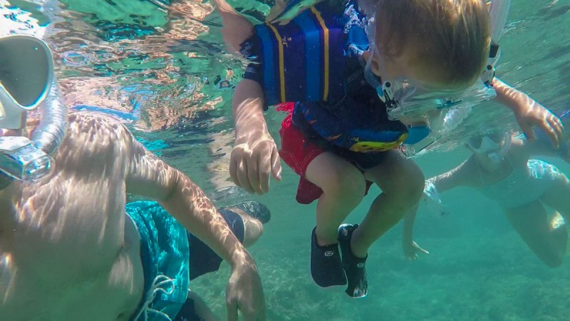 How to Snorkel-Family snorkel trip